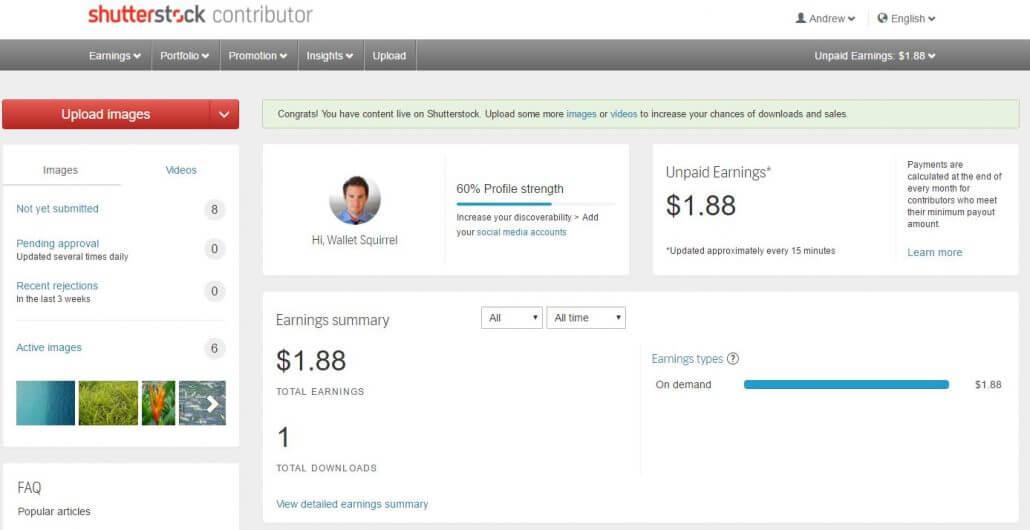 Shutterstock Dashboard - 1 Purchase